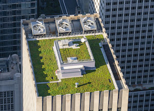 DOB Clarifies Green Roof Requirements for New and Existing Buildings