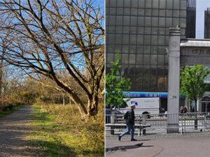 Two New Landmarks Celebrate the Diversity of New York City